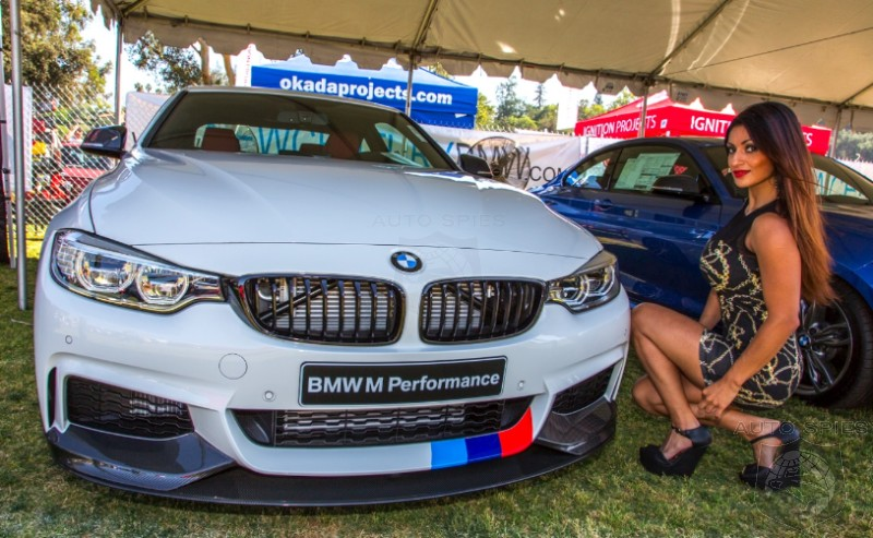 EXCLUSIVE! First And BEST Gallery From 2014 Bimmerfest. Where the DAWGS Are Having Their Day!