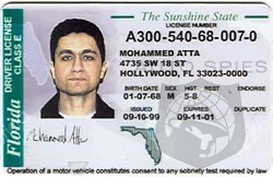 Should The Federal Government Require RFID Tags In All Drivers Licenses?
