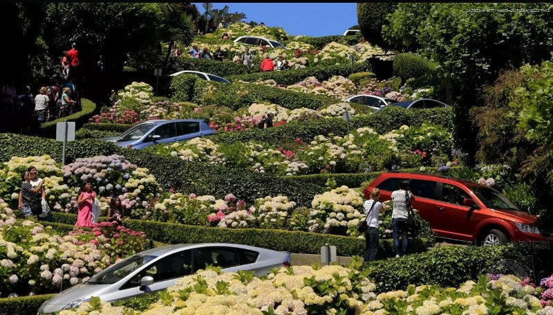 Tourist Trap: San Francisco Democrats Want To Charge Up To $10 To Drive Down Lombard Street