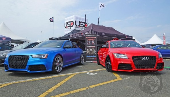 WATERFEST: The BIGGEST Volkswagen And Audi Event Of The YEAR Is Here